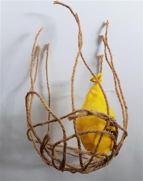 Leftfootdaisy-handmade-woven-birds-nest-dried-frame