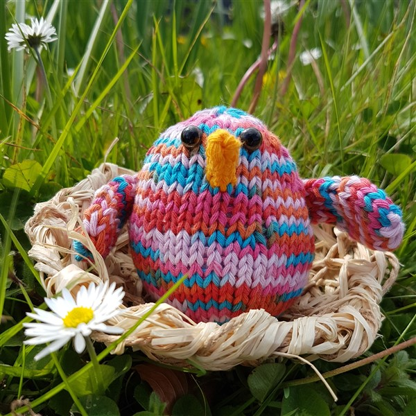 Leftfootdaisy-handmade-woven-birds-nest-chubby-chirp-in-nest