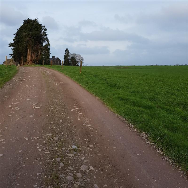 leftfootdaisy-best-laid-plans-featured-photo-farm-shot